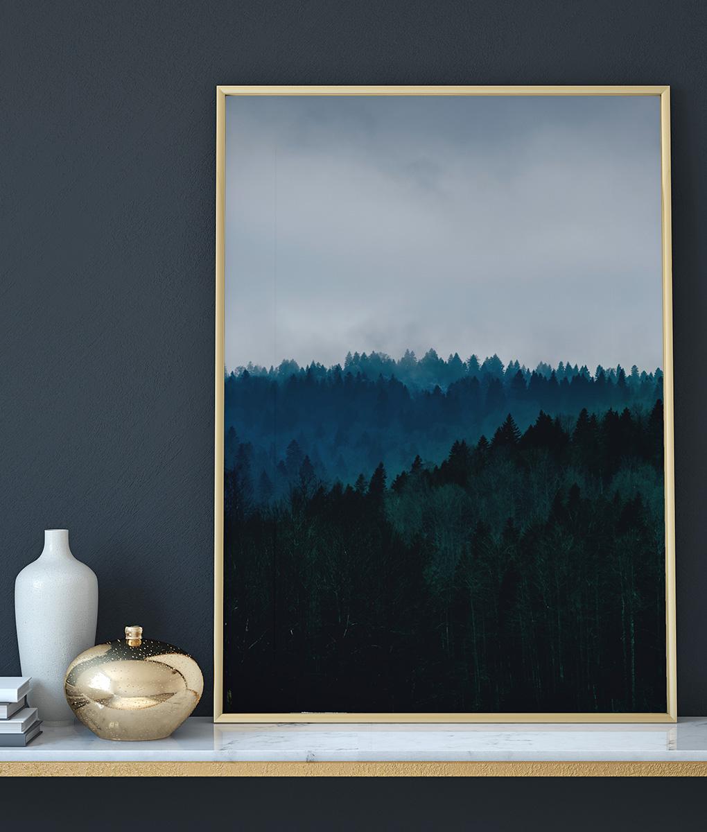 Las w górach