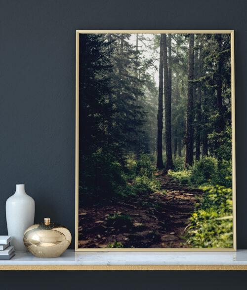 plakat dekoracyjny las 50x70